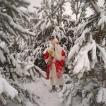 Дед Мороз и Снегурочка в детский сад и на дом!