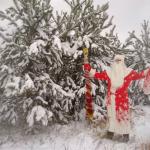 Услуга Поздравление Деда мороза и снегурочки Брест