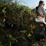 Покос травы. Облагораживание участка