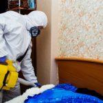 Уничтожение тараканов, клопов, насекомых. дезинфекция