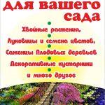 Семена овощей и цветов, саженцы в Витебске