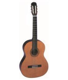 Гитара для начинающих гитаристов