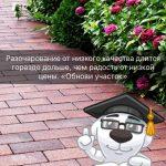 Укладка тротуарной плитки от 50м2 Минск / Нарочь