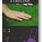 Газонная трава Dlf-Trifolium Turfline mini