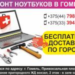 Ремонт ноутбуков в Гомеле. Бесплатная доставка по городу.